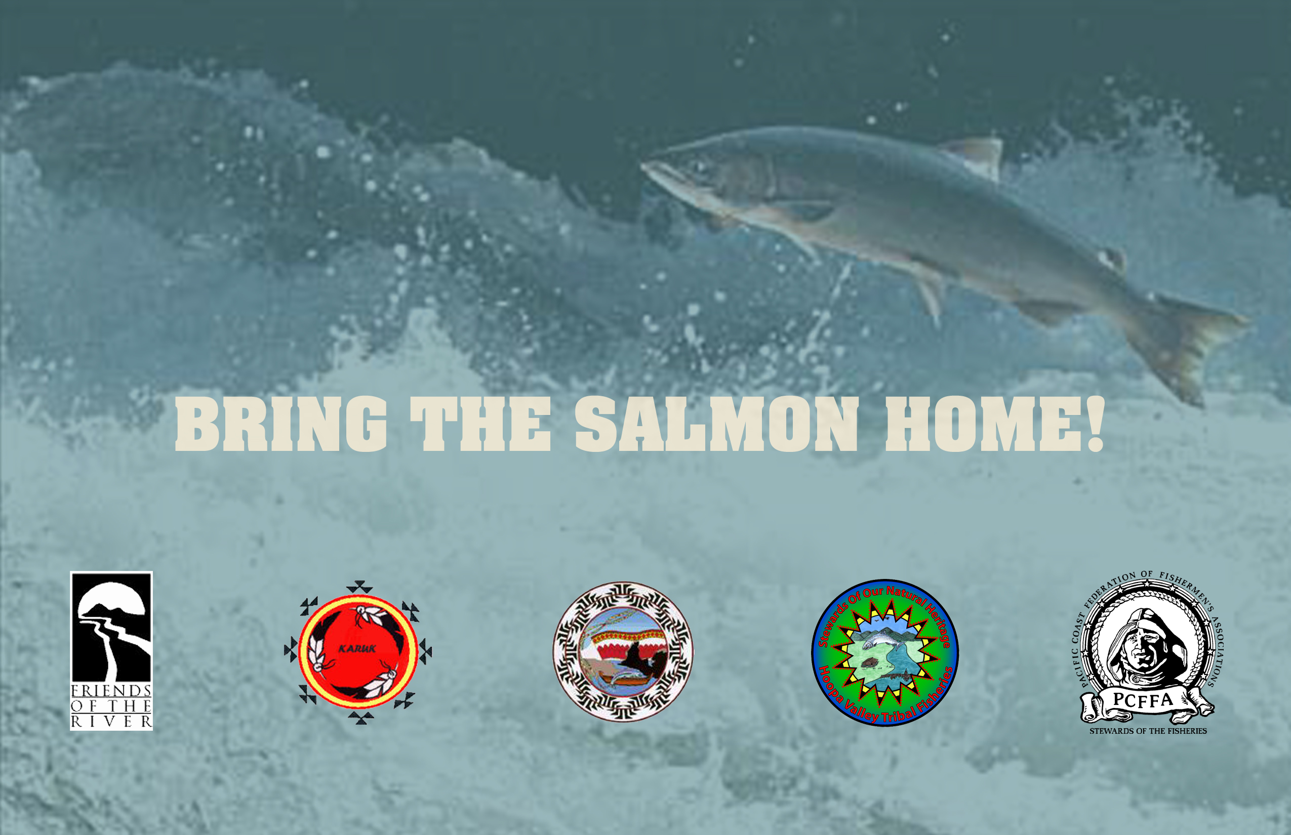 Bring the Salmon Home!