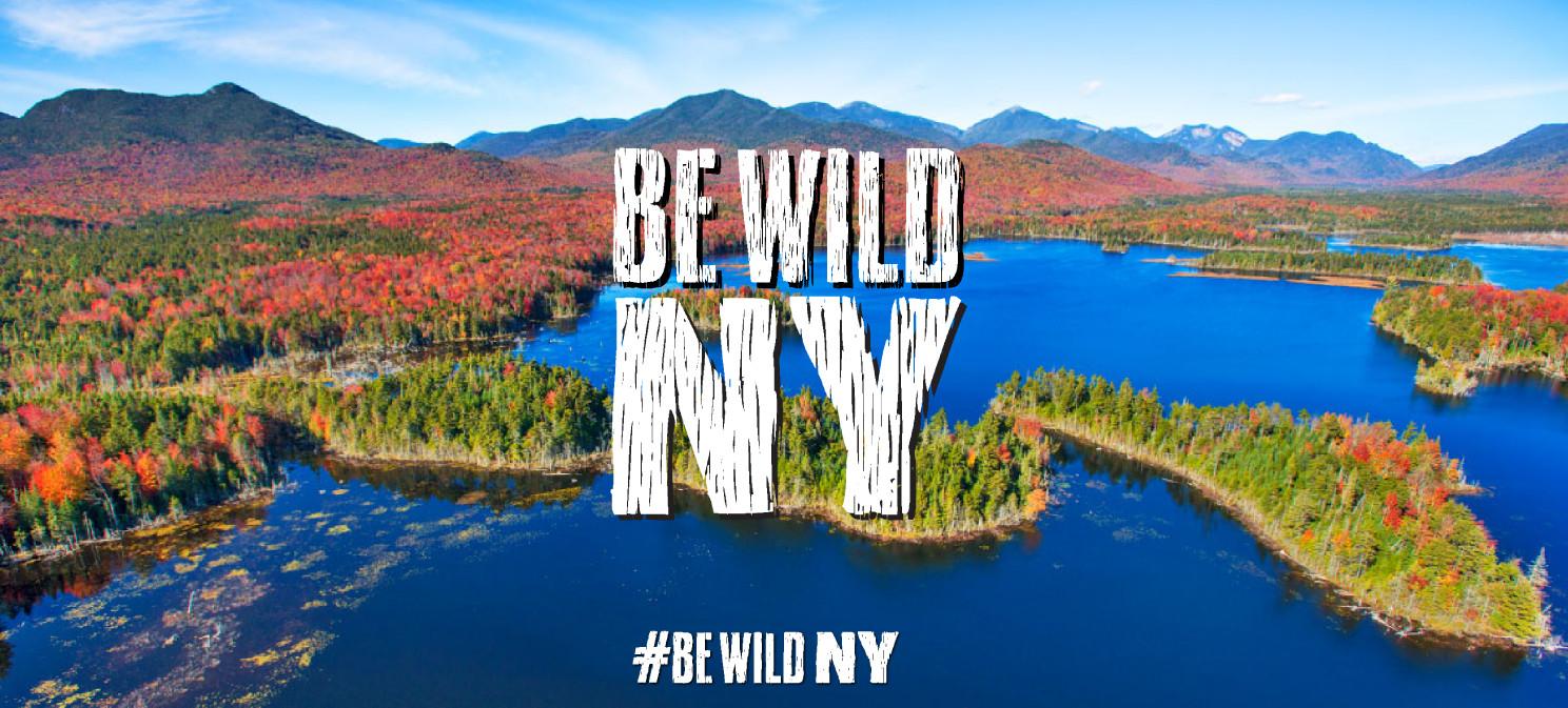 Be Wild NY